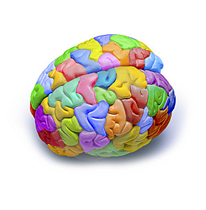 colorful-brain